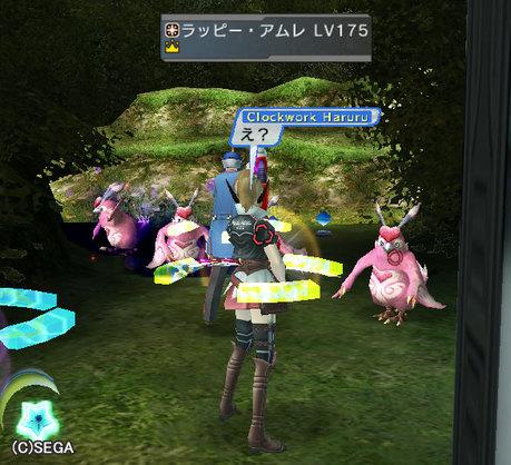 Haruru_6138